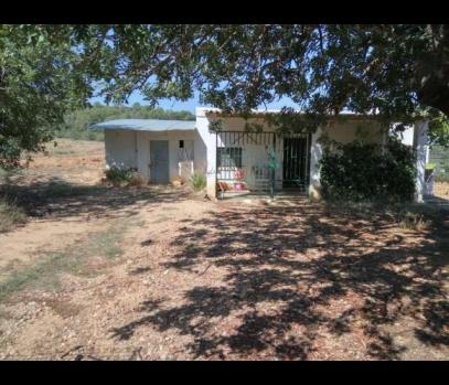 Продажа загородного дома с участком недалеко от Валенсии