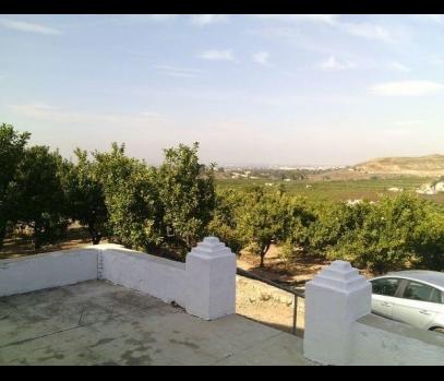 Продажа загородного поместья с участком в пригороде Валенсии